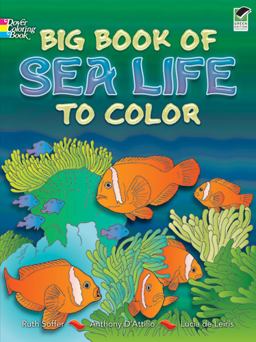 Big Book of Sea Life to Color (price includes US S&H)