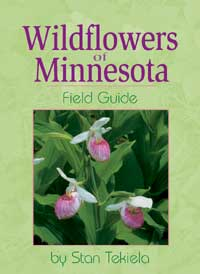 Wildflowers of Minnesota