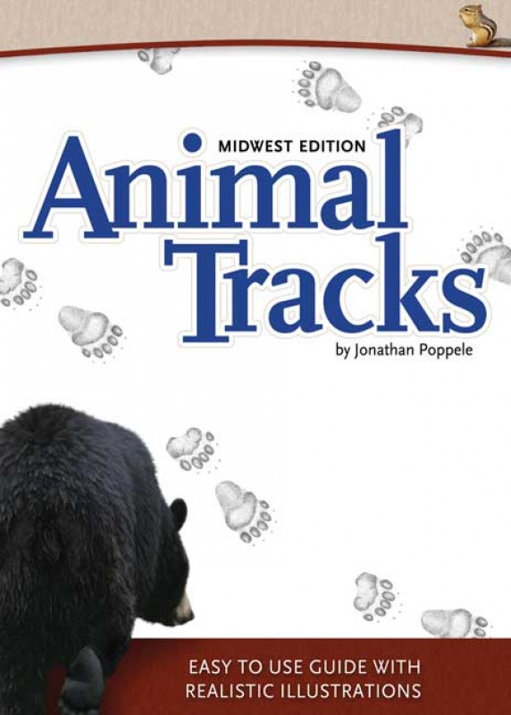 Animal Tracks: Midwest Edition
