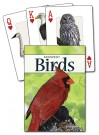 Birds of the Midwest Cards (price includes US S&H)