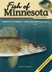 Fish of Minnesota