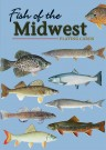 Fish of the Midwest Cards (price includes US S&H)