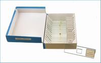 Microscope Slide Set: Textile (price includes US S&H)