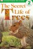 Secret Life of Trees - Level 2 Reader